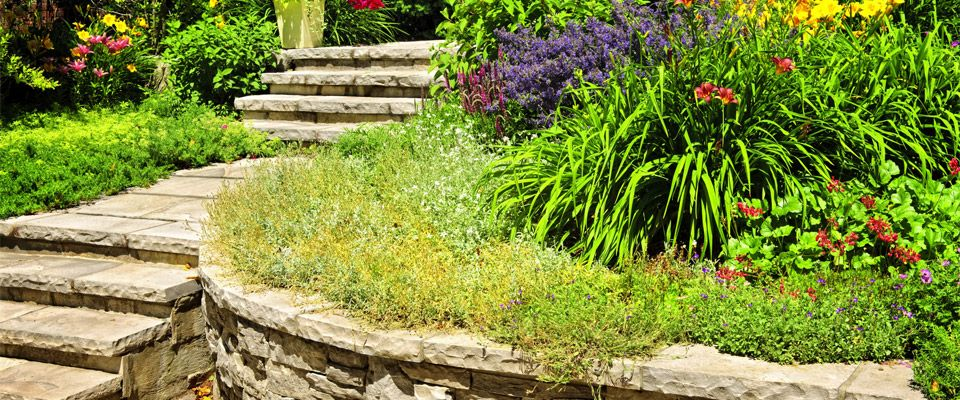 landscaping and lawn maintenance in Kamloops